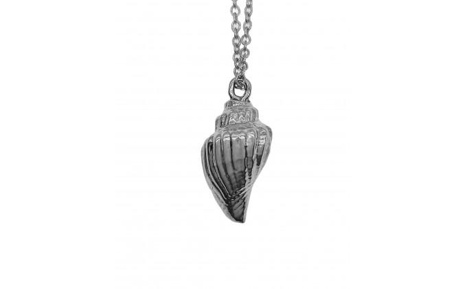 M 153 s  Silver seashell 4