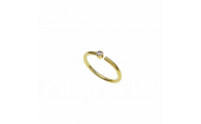 D 418g  SILVER RING