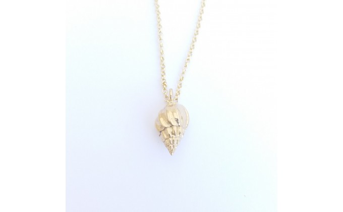 Silver seashell 9