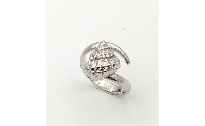 SH 1 Silver ring sea shell